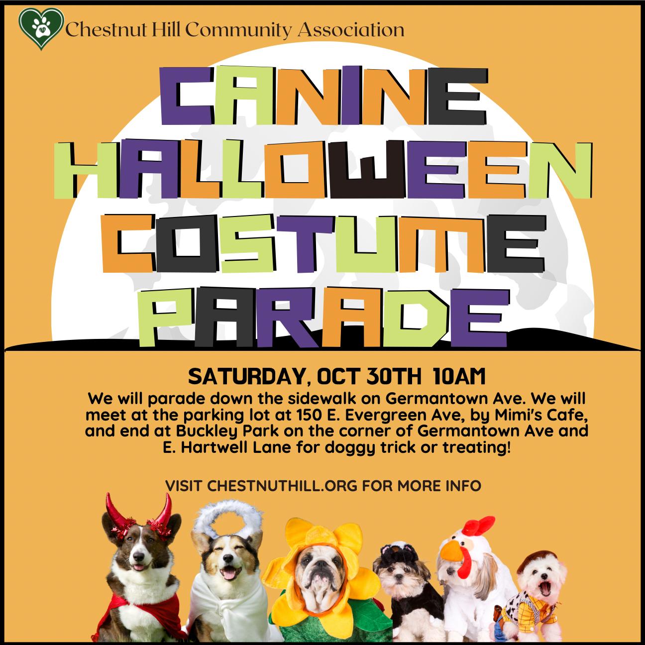 Chestnut Hill Halloween Dog Parade